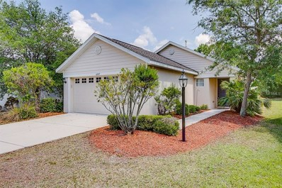 6207 Blackdrum Court, Lakewood Ranch, FL 34202 - MLS#: T3167093