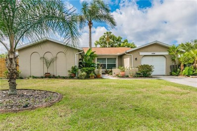 5824 Riddle Road, Holiday, FL 34690 - #: T3167222