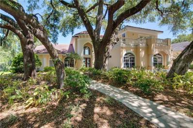 1682 Canopy Oaks Boulevard, Palm Harbor, FL 34683 - #: T3167674