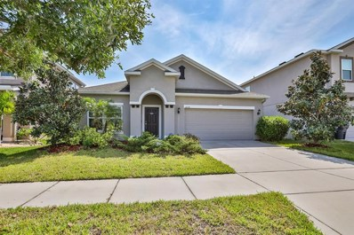 12114 Whistling Wind Drive, Riverview, FL 33569 - #: T3167964