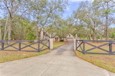 12048 Osprey Avenue, Weeki Wachee, FL 34614 - MLS#: T3167965