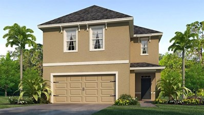 10221 Geese Trail Circle, Sun City Center, FL 33573 - MLS#: T3167986