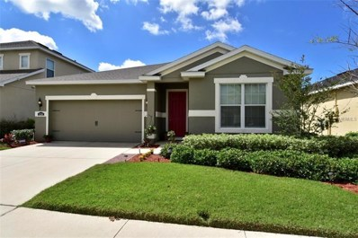 11241 Spring Point Circle, Riverview, FL 33579 - MLS#: T3168216