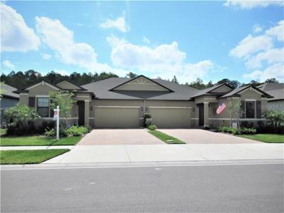 17014 Balance Cove, Land O Lakes, FL 34638 - MLS#: T3168583