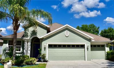 10531 Deerberry Drive, Land O Lakes, FL 34638 - #: T3168687