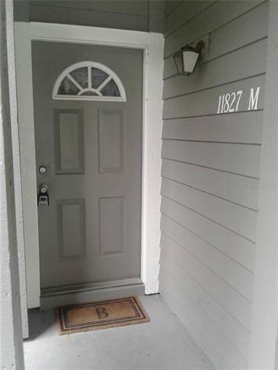 11827 Skylake Place, Temple Terrace, FL 33617 - #: T3168707
