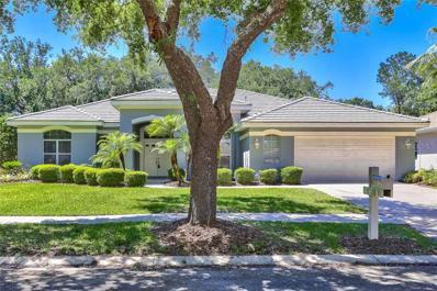 17812 Eagle Trace Street, Tampa, FL 33647 - MLS#: T3168868