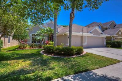 11605 Renaissance View Court, Tampa, FL 33626 - #: T3168973