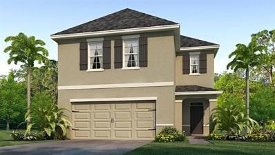 7960 Pelican Reed Circle, Wesley Chapel, FL 33545 - #: T3168996