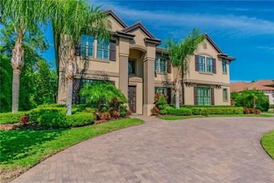 11633 Calf Path Drive, Tampa, FL 33626 - MLS#: T3169288