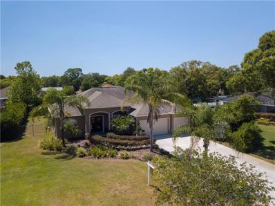 17504 Blessed Place, Lutz, FL 33549 - #: T3169943