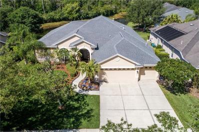 10261 Shadow Branch Drive, Tampa, FL 33647 - MLS#: T3169968
