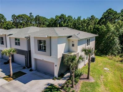 6420 Sanctuary Creek Lane, Tampa, FL 33625 - #: T3170473