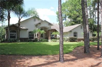 424 Pine Bluff Drive, Lutz, FL 33549 - MLS#: T3170604