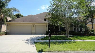 26934 Shoregrass Drive, Wesley Chapel, FL 33544 - MLS#: T3170694