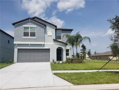 12748 Lemon Pepper Drive, Riverview, FL 33578 - #: T3171464