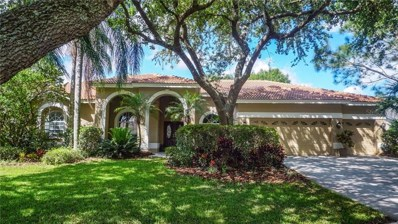 17806 Ridgeway Court, Tampa, FL 33647 - #: T3171649