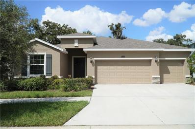 10417 Riverdale Rise Drive, Riverview, FL 33578 - #: T3171768