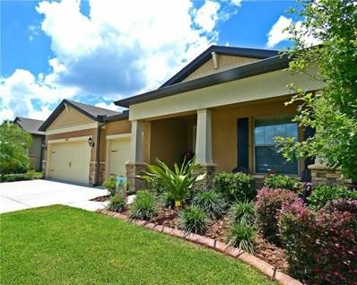 1527 Banner Elk Street, Valrico, FL 33594 - MLS#: T3172320