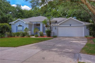 4203 Thistle Terrace Place, Valrico, FL 33596 - #: T3172505