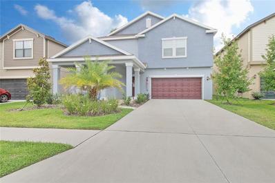 14276 Blue Dasher Drive, Riverview, FL 33569 - #: T3172777