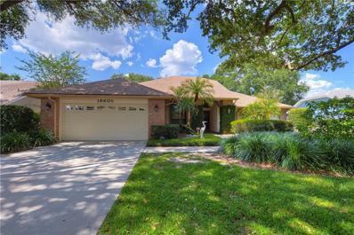 16605 Windsor Park Drive, Lutz, FL 33549 - #: T3172949
