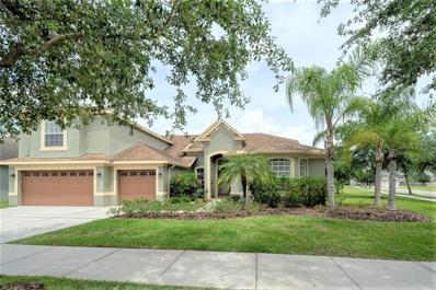 19124 Sweet Clover Lane, Tampa, FL 33647 - MLS#: T3173347