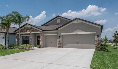 11450 Amapola Bloom Court, Riverview, FL 33579 - #: T3173717