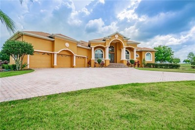 12245 Tradition Drive, Dade City, FL 33525 - MLS#: T3174979