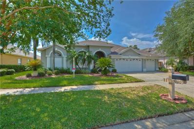 19130 Wind Dancer Street, Lutz, FL 33558 - MLS#: T3175001