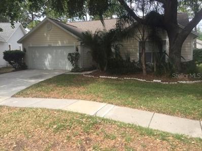 17707 Esprit Drive, Tampa, FL 33647 - #: T3175179