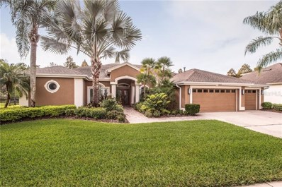 12129 Clear Harbor Drive, Tampa, FL 33626 - #: T3175972