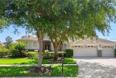 15721 Ibisridge Drive, Lithia, FL 33547 - #: T3176134