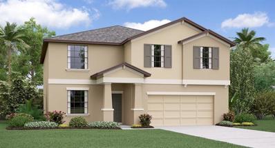 10022 Rose Petal Place, Riverview, FL 33578 - #: T3176146