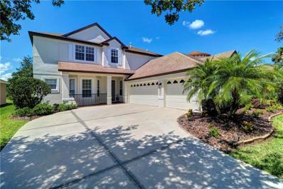 8351 Old Town Drive, Tampa, FL 33647 - MLS#: T3176402