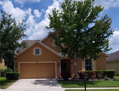 22967 Wood Violet Court, Land O Lakes, FL 34639 - MLS#: T3177765