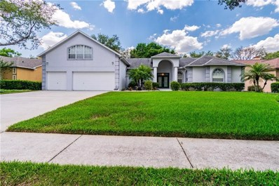 2528 Regal River Road, Valrico, FL 33596 - #: T3177892