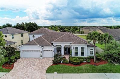 20268 Ravens End Drive, Tampa, FL 33647 - MLS#: T3178249