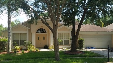 9227 Dayflower Drive, Tampa, FL 33647 - MLS#: T3178453
