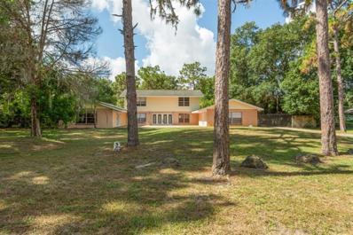 17720 Eagle Lane, Lutz, FL 33558 - #: T3179324