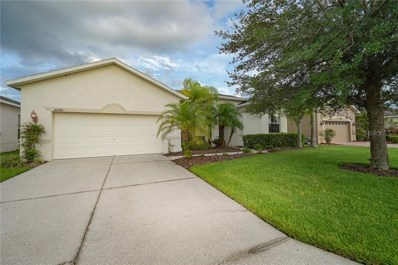 10048 Cleghorn Drive, San Antonio, FL 33576 - MLS#: T3179442