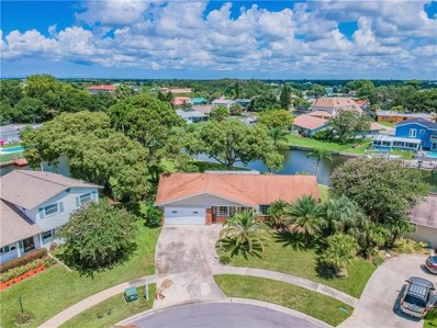 8725 Cobblestone Drive, Tampa, FL 33615 - MLS#: T3179640