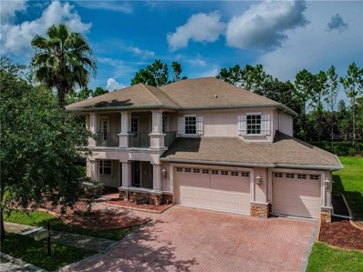 21413 Draycott Way, Land O Lakes, FL 34637 - MLS#: T3179655