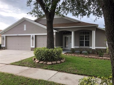 2768 Valencia Grove Drive, Valrico, FL 33596 - MLS#: T3179727