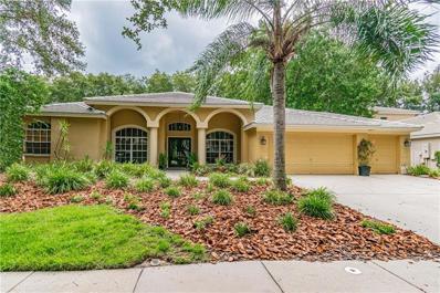 9304 Wellington Park Circle, Tampa, FL 33647 - MLS#: T3180251