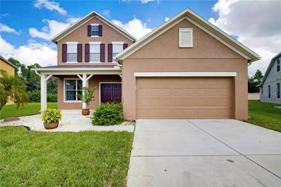 23048 Wood Violet Court, Land O Lakes, FL 34639 - MLS#: T3180861