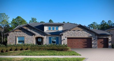 29105 Picana Lane, Wesley Chapel, FL 33543 - MLS#: T3181219