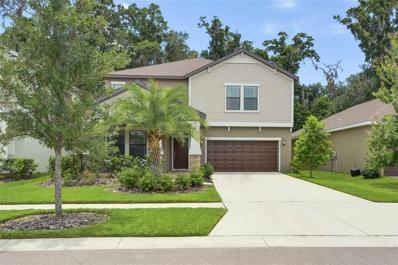 11807 Twilight Darner Place, Riverview, FL 33569 - #: T3182176