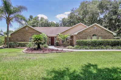 18219 Clear Lake Drive, Lutz, FL 33548 - MLS#: T3182779