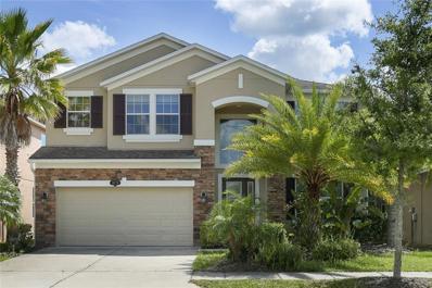 10776 Pictorial Park Drive, Tampa, FL 33647 - MLS#: T3182867